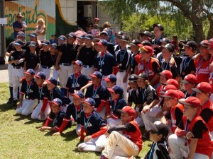 Little League Minors/Majors Grading Day – August 6